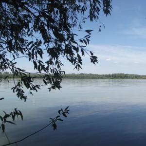 Popodne na Dunavu
